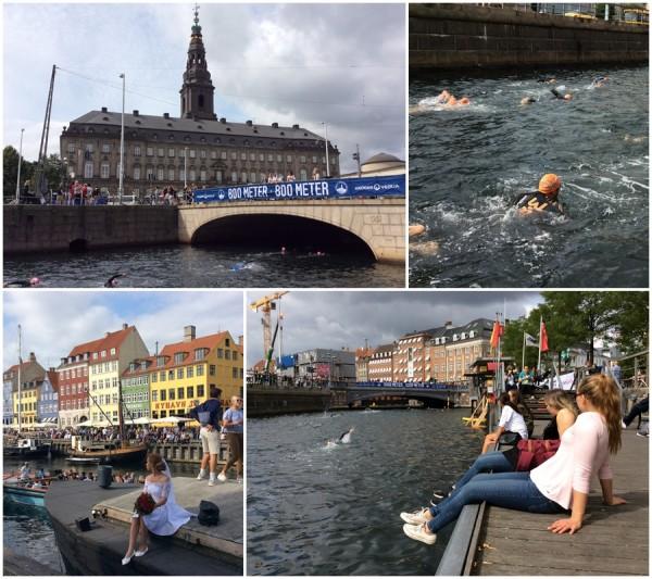 Ежегодный заплыв в центре Копенгагена