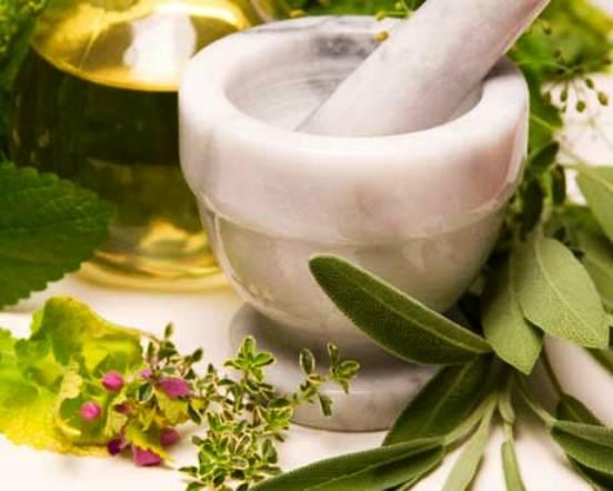 Сборы лекарственных растений, рекомендуемые при заболеваниях желудочно-кишечного тракта