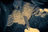 часть1.Пройди испытания «СТАНЬ ВОИНОМ»  (Авторский комплекс психологических треннингов)