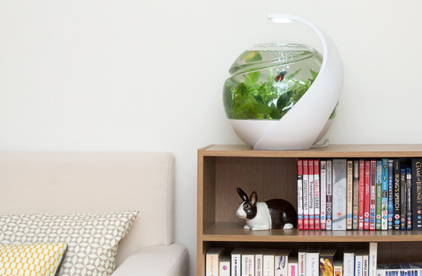 Идеальный аквариум  все делает сам