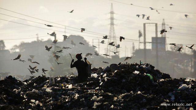 Планета людей (47 фото)