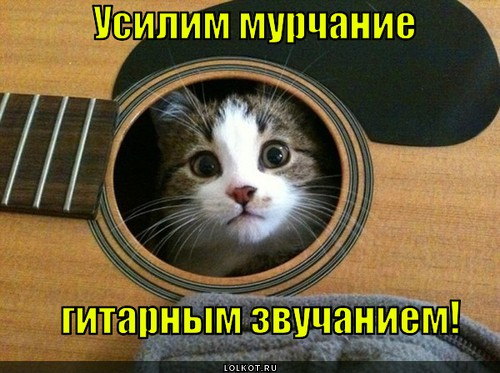 Лучший гитарный усилитель