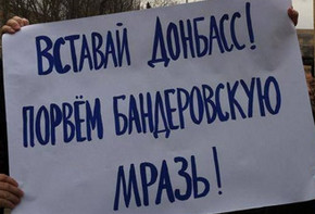 Записки ополченца ЛНР - конец января