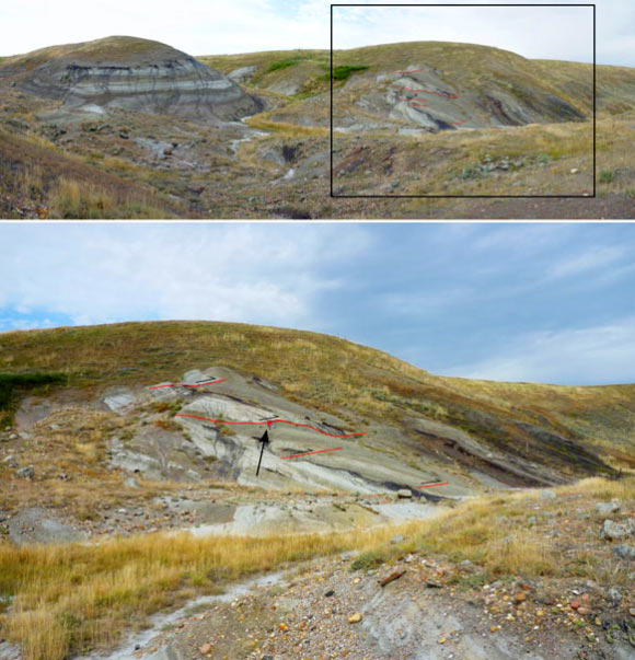Outcrop photographs from the Bow City crater: top - panoramic view; bottom - a close-up showing thrust faults, outlined in red; geologist kneeling on outcrop, black arrow, for scale. Image credit: Paul Glombick et al.