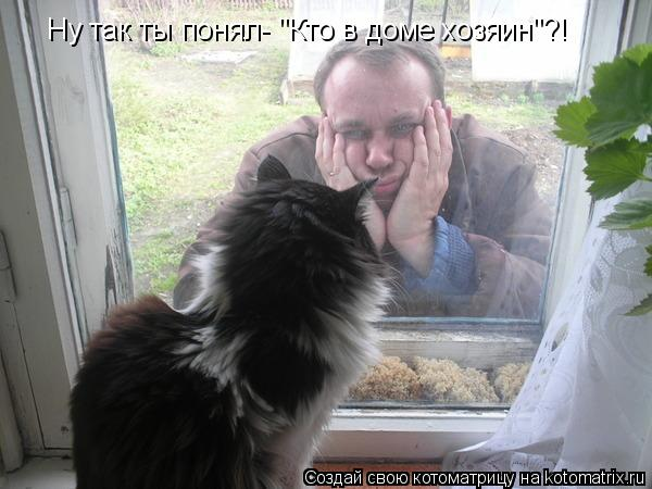 Котоматрица - Ну так ты понял-
