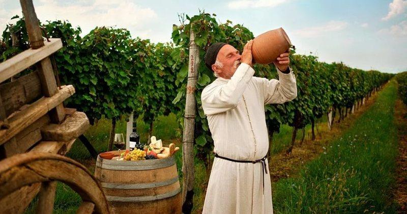Что нужно знать о грузинском вине: краткое введение в тему