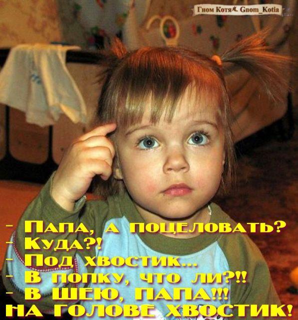 Смешные истории razvlekalka.com - все развлечения на одном п…