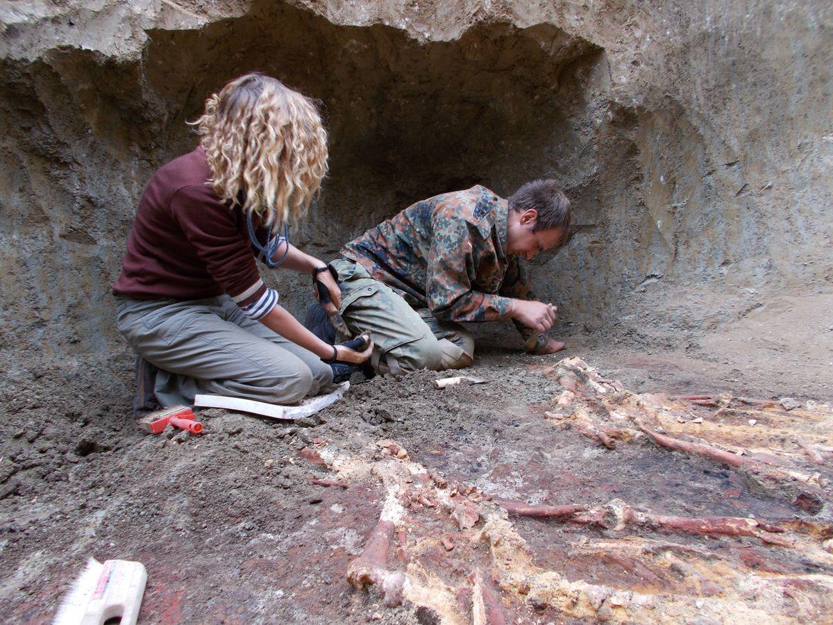 СЕНСАЦИЯ! На Кубани в ст. Новопокровской найдены останки древних людей-великанов!