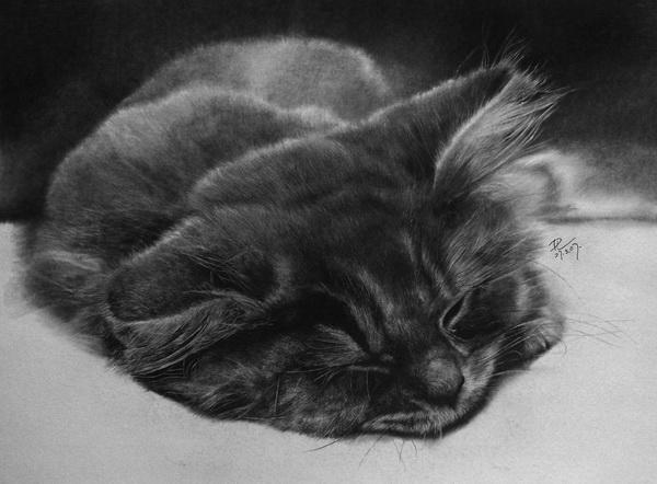 карандашные рисунки Павла Легкого