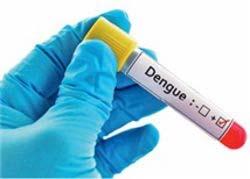 Первая вакцина от лихорадки денге прошла регистрацию