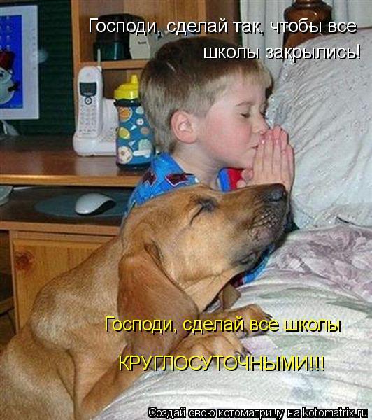 Котоматрица - Господи, сделай так, чтобы все школы закрылись!  Господи, сделай все шк