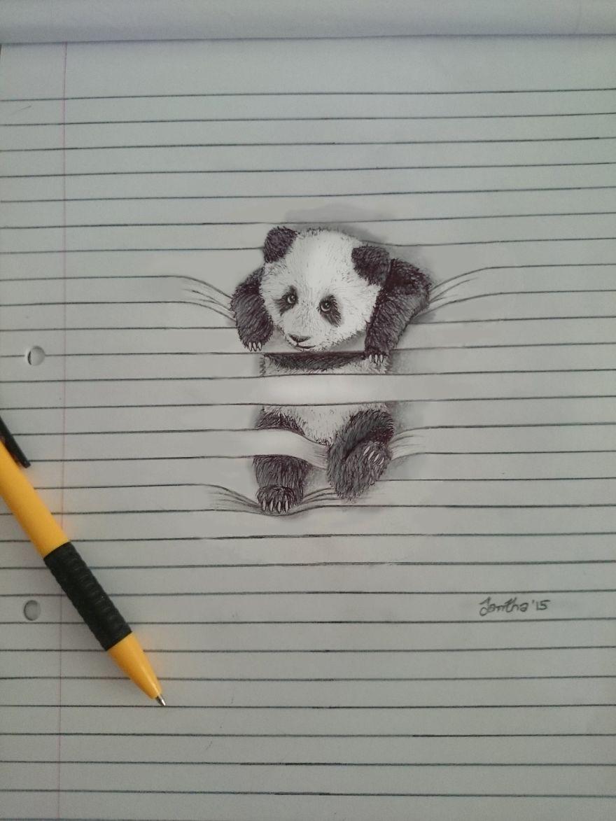 Как рисовать в тетради животных
