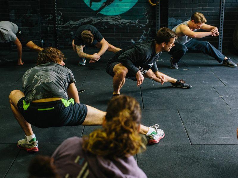 Восстановление животной гибкости животные, здоровые, образ_жизни, организм, сила, спорт, тренировка, человек