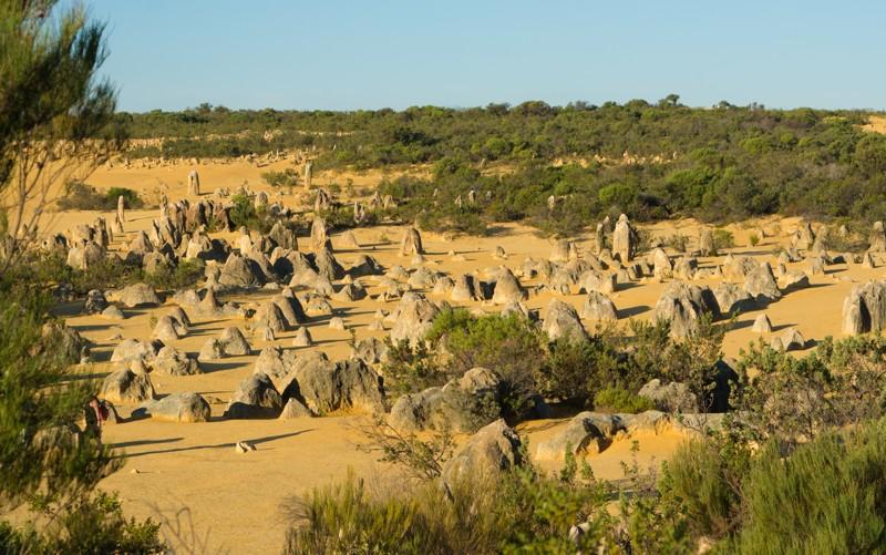 Пинаклс: пустыня остроконечных башенок - уникальное творение природы