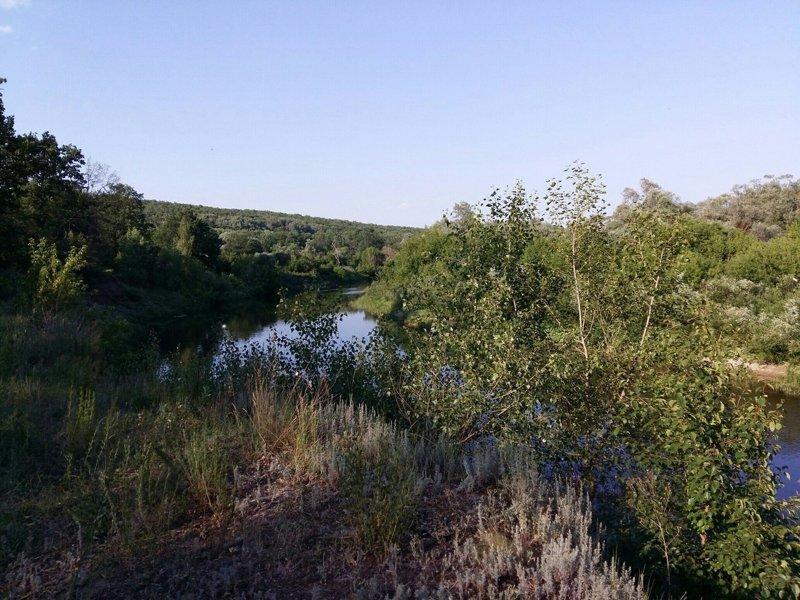 Природа одного поселка красота, природа, село