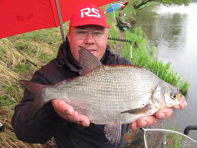 прикормка на рыбалке фото