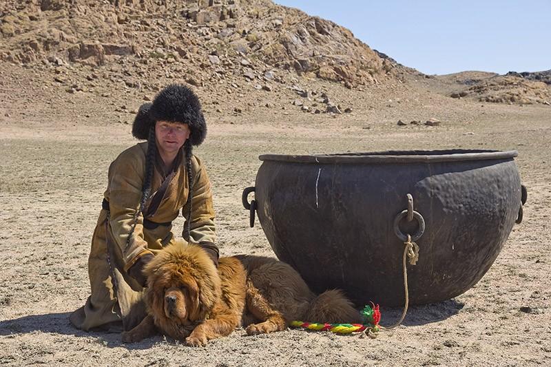 Тибетский мастиф : Снежные львы из Тибета в Казахстан