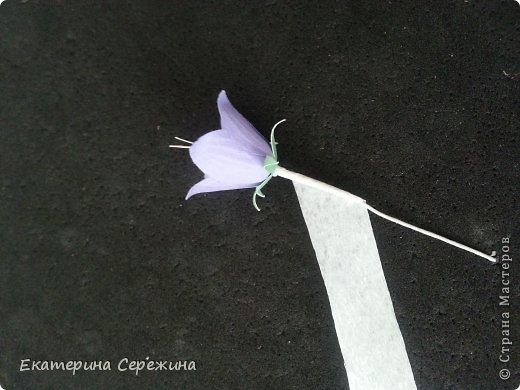 Мастер-класс Бумагопластика Колокольчик полевой  Бумага фото 6