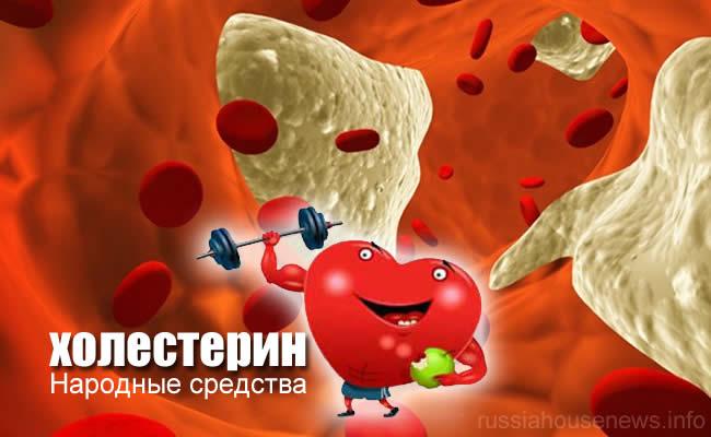 как снизить холестерин народными средствами в домашних