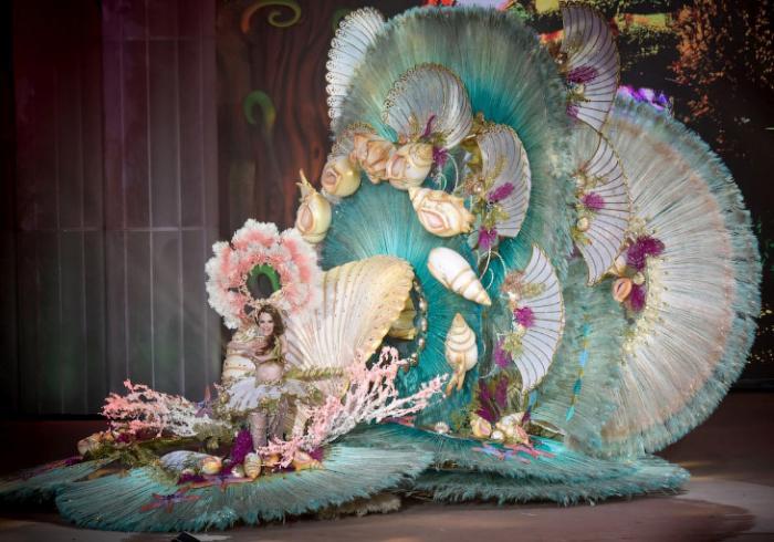 Как проходит карнавал в Сант…