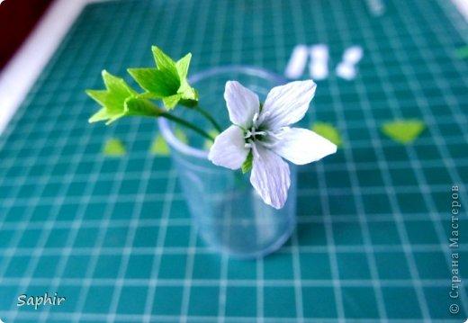 Мастер-класс Бумагопластика Маленькие цветочки из бумаги Кристал  Бумага гофрированная фото 10