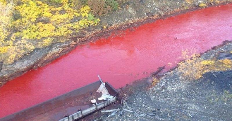 Багровая река в Норильске. И это совсем не сиквел знаменитого фильма!
