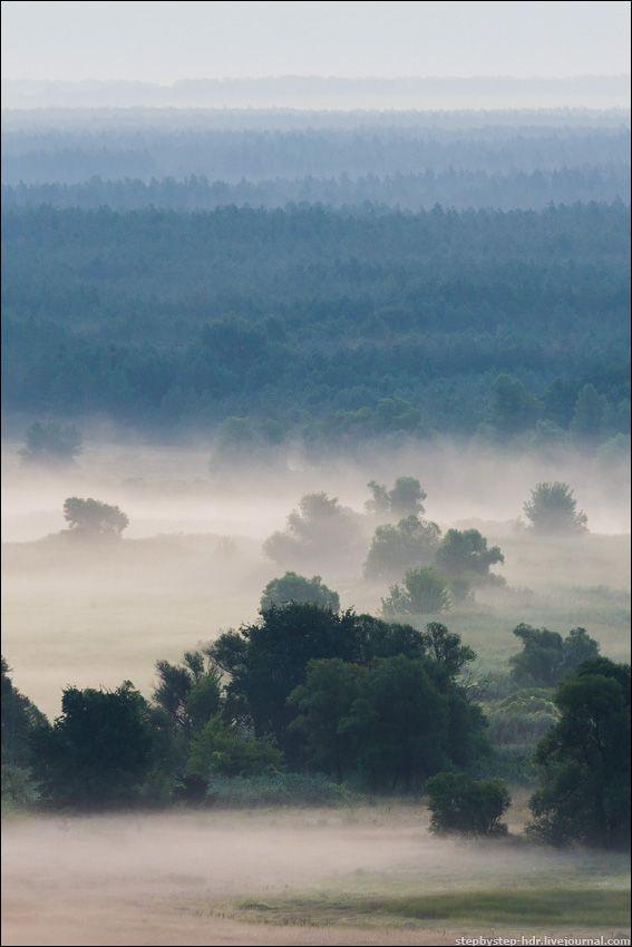 fog13 Королевство туманов