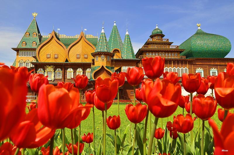 Восьмое Чудо Света  русского царя  Алексея I