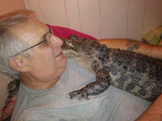 Объятия с аллигатором помогли мужчине спастись от депрессии