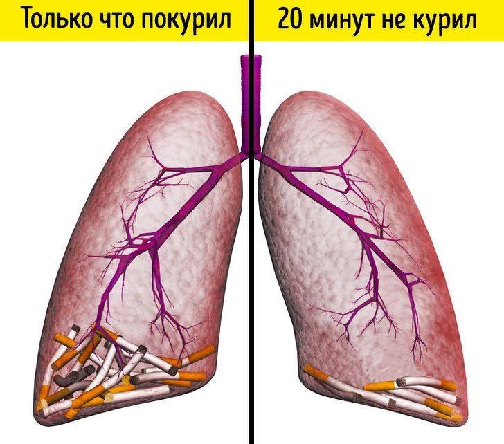 Что произойдёт с организмом, если отказаться от сигарет хотя бы на 2 недели