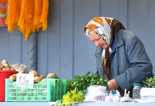 Налог для самозанятых коснется бабушек, торгующих пирожками и зеленью