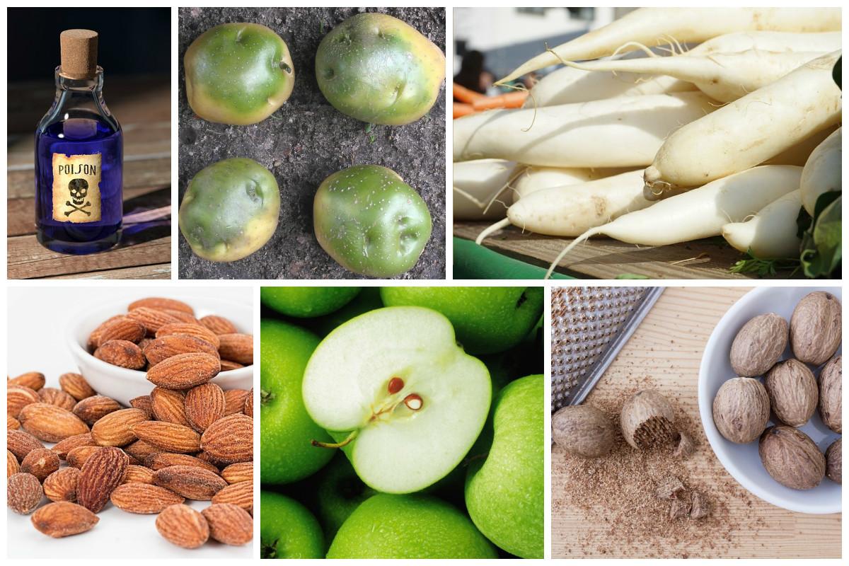 11 повседневных продуктов, которые могут быть ядовиты!