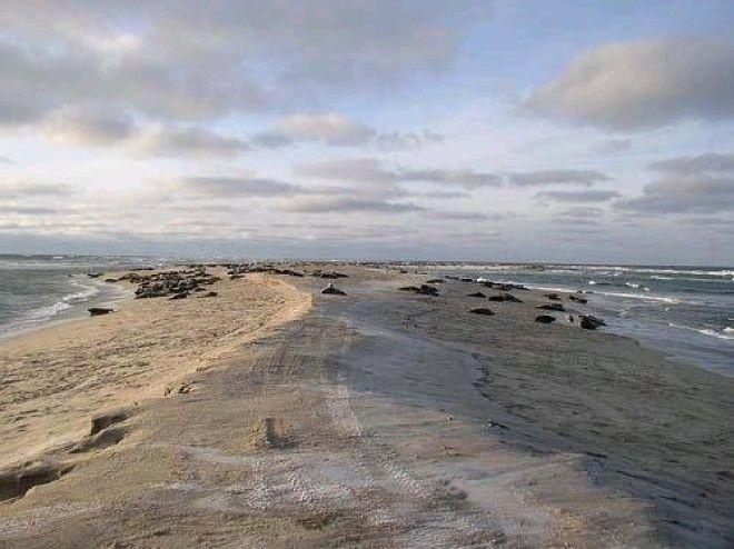 Остров невезения в океане есть