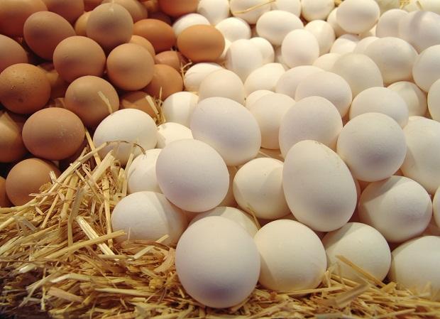 В чем разница между белыми и коричневыми яйцами?