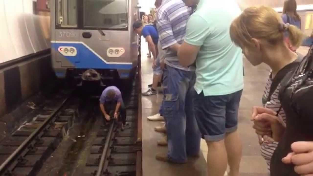 Пассажир упал на пути на Кольцевой линии метро