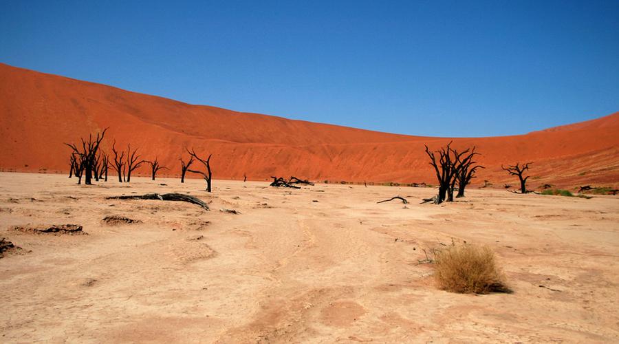 Марсианские ландшафты нашей планеты