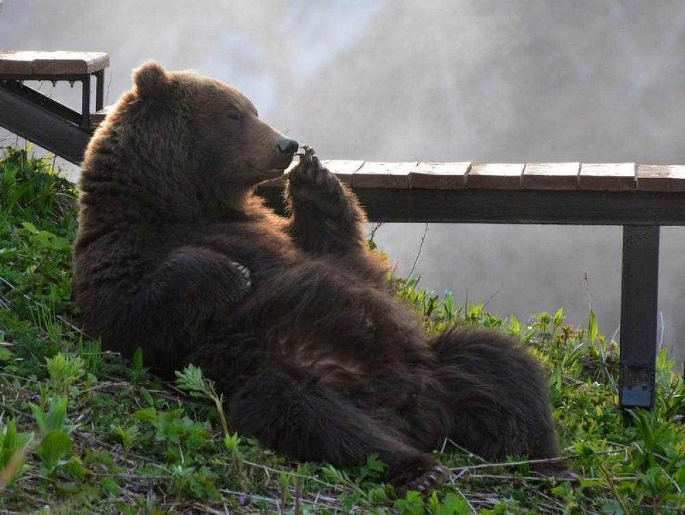 natgeo29 Topo Fotografias National Geographic setembro