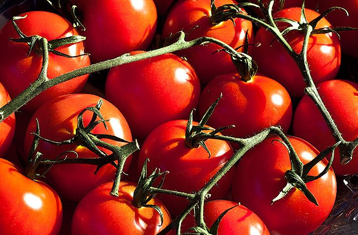 17 самых полезных ягод для человеческого организма
