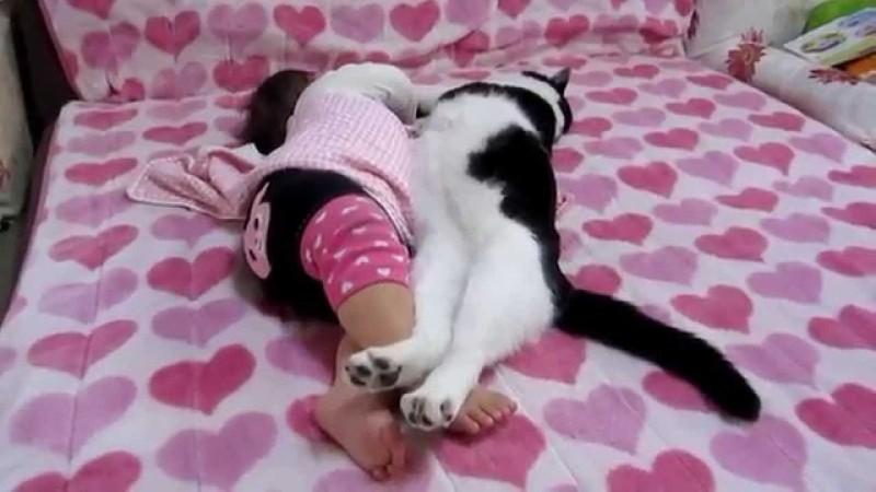Можно ли держать кота в доме с маленьким ребёнком?