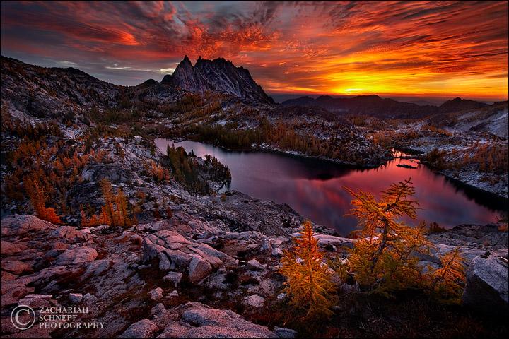 Красивые фото природы от Зака Шнепфа