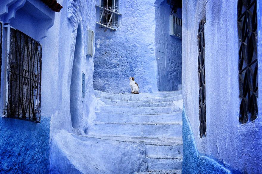 Голубой город 20 бесподобных…