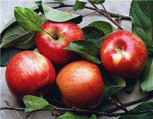 Яблоки для красоты и здоровья