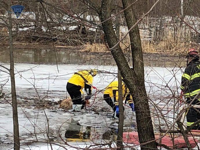 Люди искали собаку, но даже не догадывались, что она застряла во льду