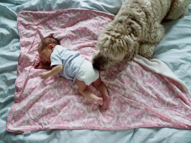 Как я не хотел быть отцом