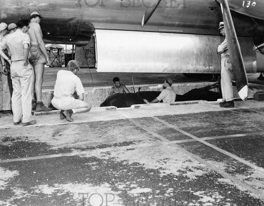 «Толстяка» аккуратно поднимают в бомбовый отсек B-29.