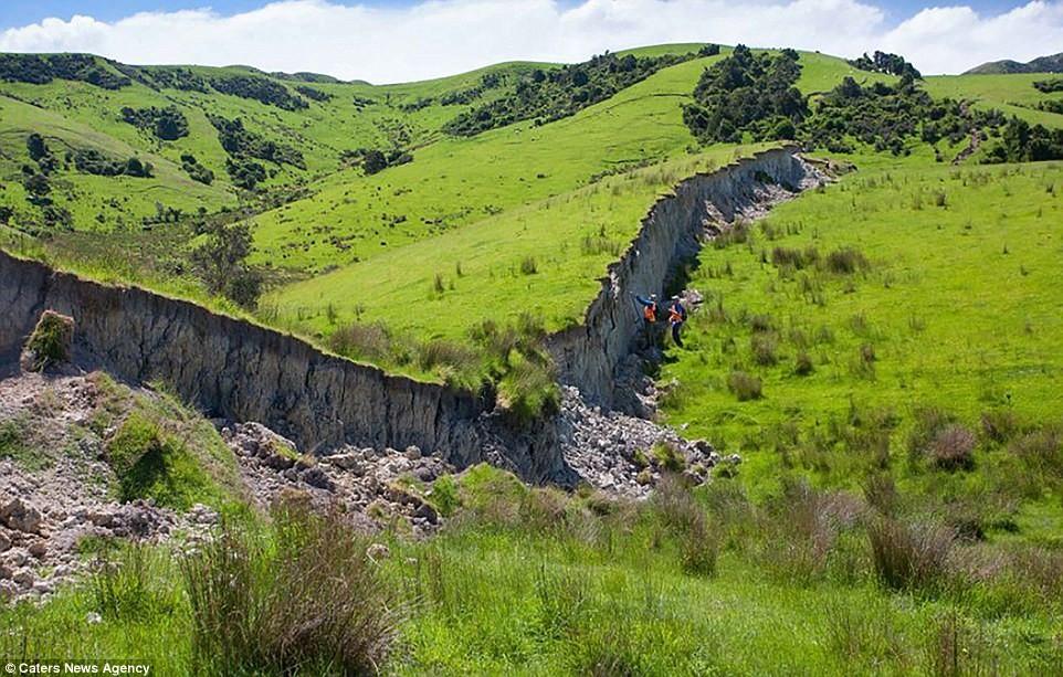 Великая стена: в результате землетрясения в Новой Зеландии образовались стены высотой 5 метров