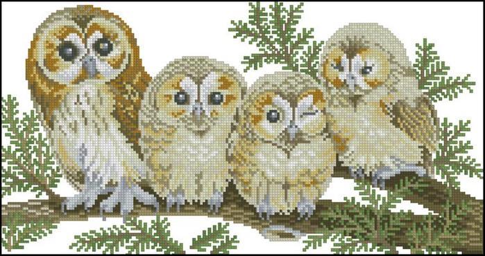 Небольшие красивые схемы с совами для вышивания крестом