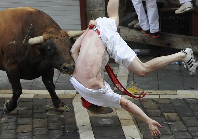 """Мораль сей басни такова: """"Не зли быка""""!"""