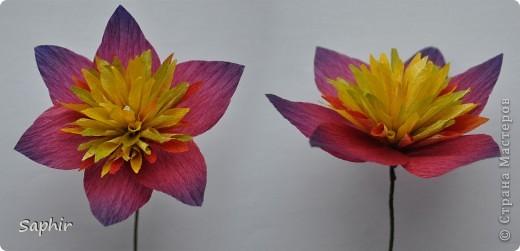 Поделка изделие Бумагопластика цветы из гофробумаги  мастер-класс Бумага гофрированная фото 11