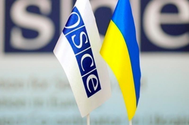 В Киеве напали на французскую представительницу ОБСЕ